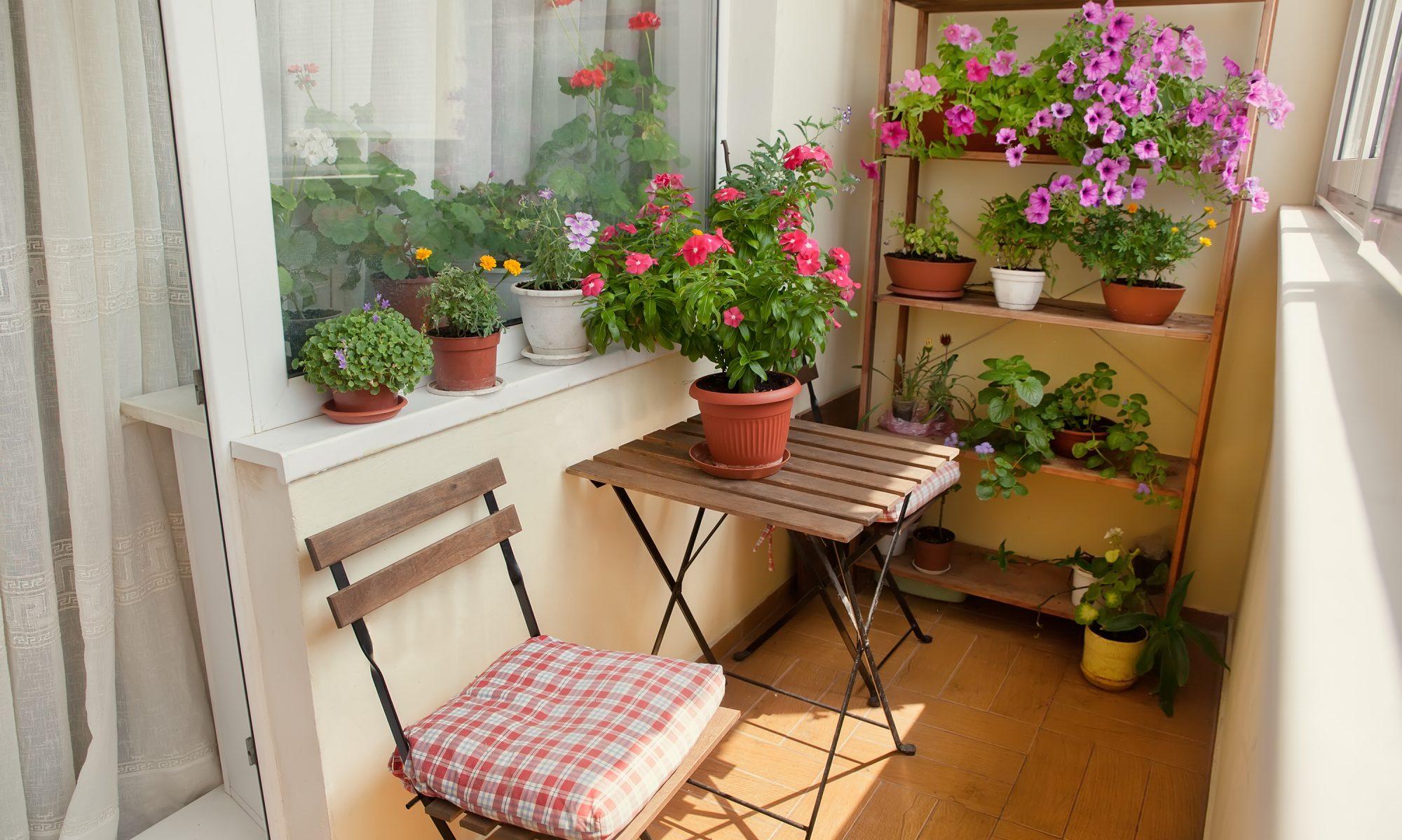 patio furnature